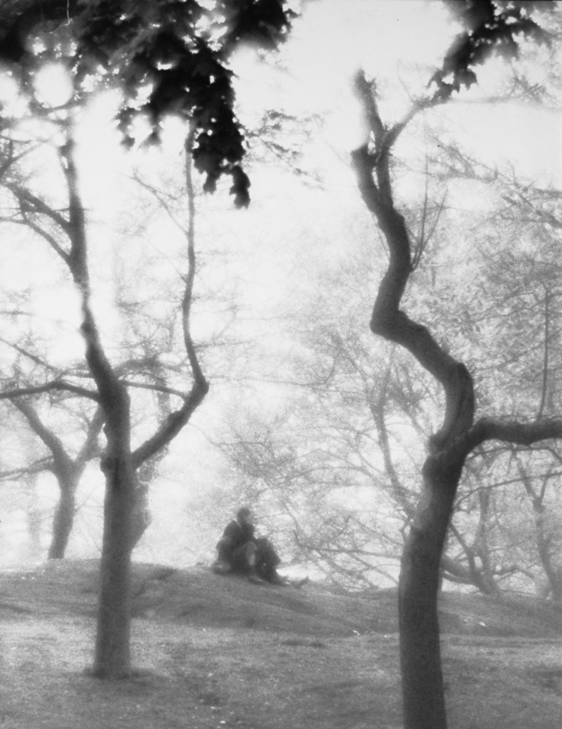 - A fantasy in Central Park. - Photojournalism - Life Magazine - Black and white photography - Canon rangefinder and SLR cameras - - art  - photography - by Tony Karp