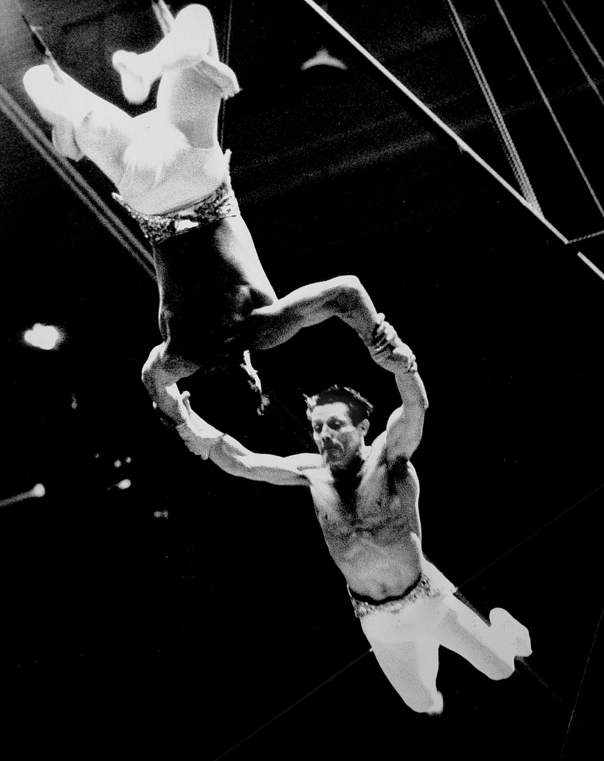 - Another perfect catch on the flying trapeze. - Leo Stashin. Circus, Ringling Bros. Barnum and Bailey, Madison Square Garden, tightrope, trapeze. Alzana, black and white - - art  - photography - by Tony Karp