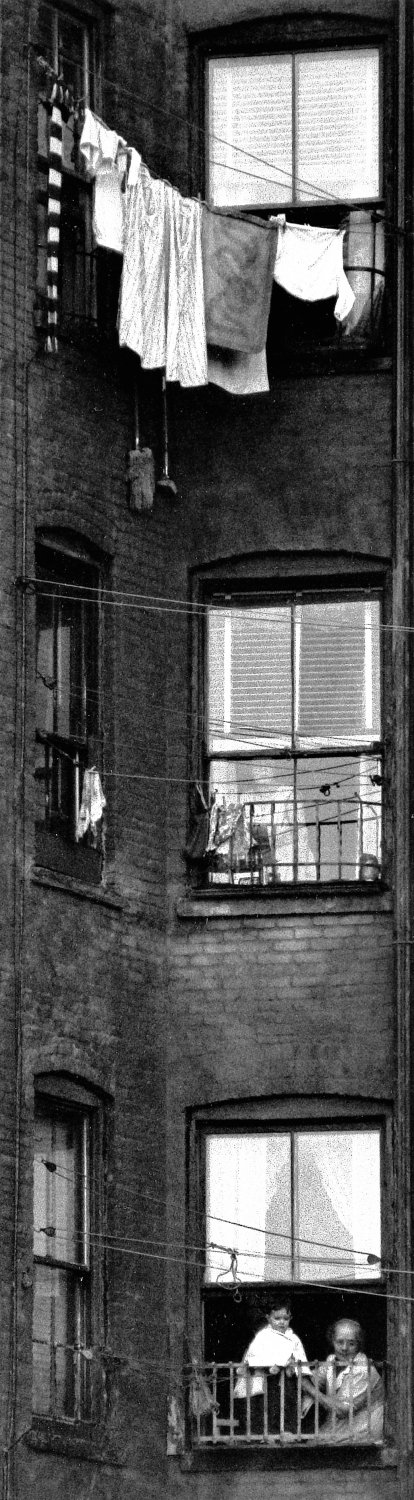 - Tenement windows, circa 1959. - Photojournalism - Life Magazine - Black and white photography - Canon rangefinder and SLR cameras - - art  - photography - by Tony Karp