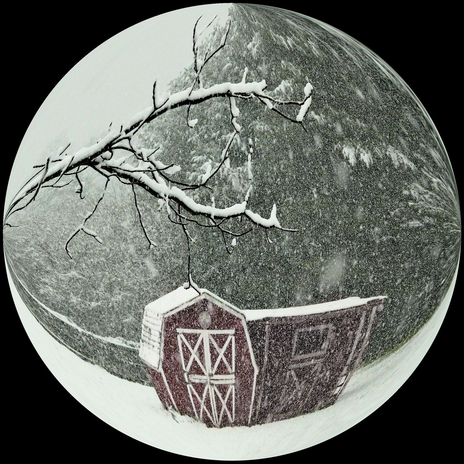 -  Snow globe in a bubble - Bubble Pictures - made with Wilkington-Smythe