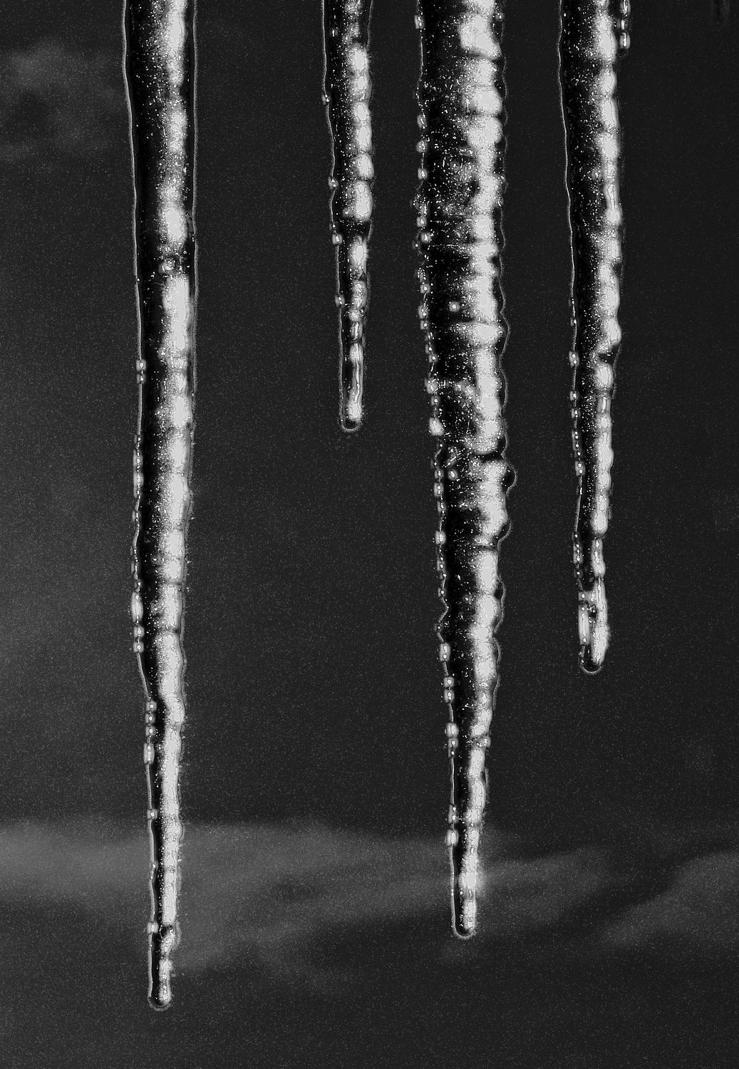 -  Panasonic DMC-FZ18 - Black icicles in the manner of a mezzotint. - - art  - photography - by Tony Karp