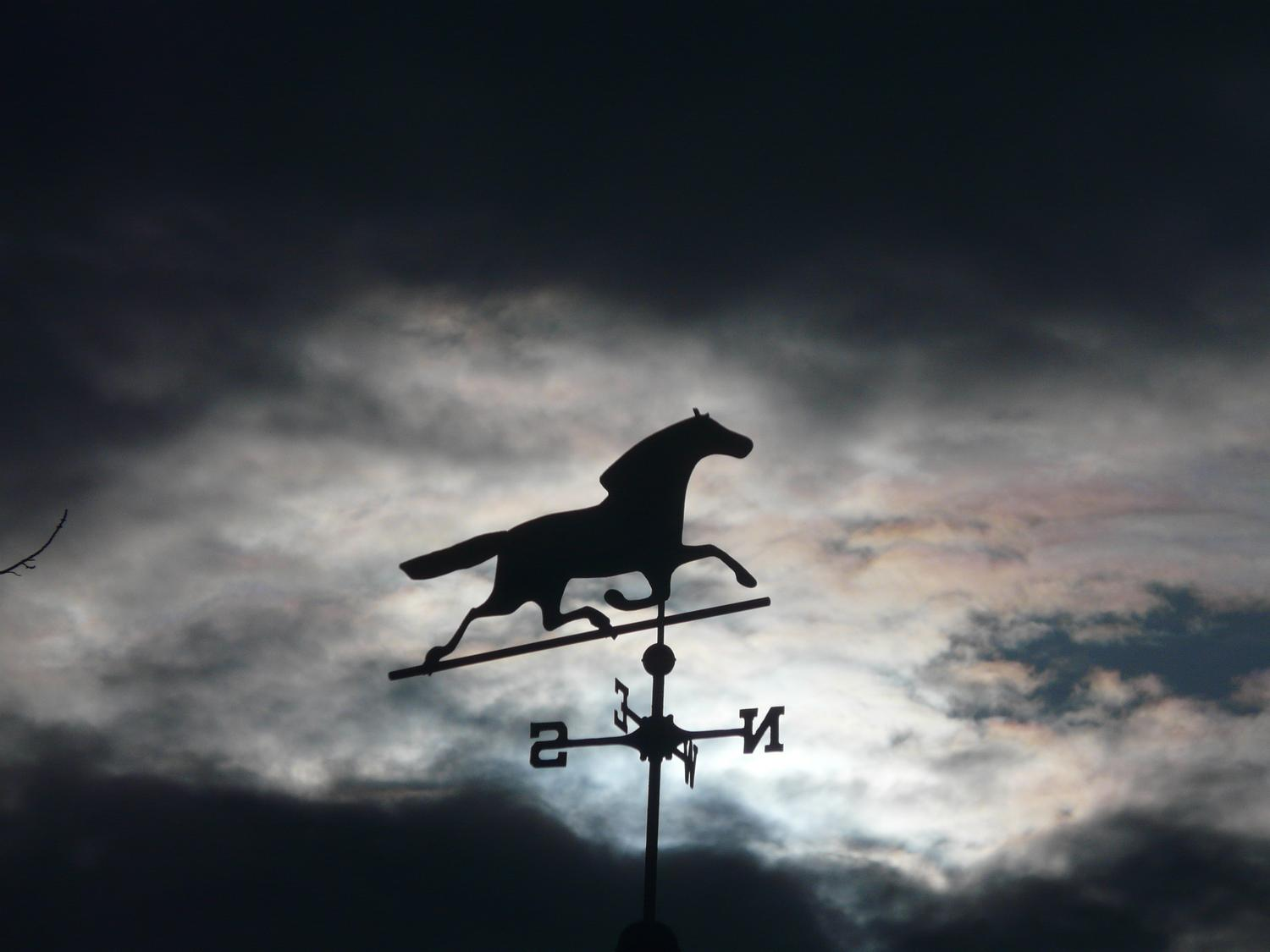 - Horse over my head, against the clouds and sun - - art  - photography - by Tony Karp